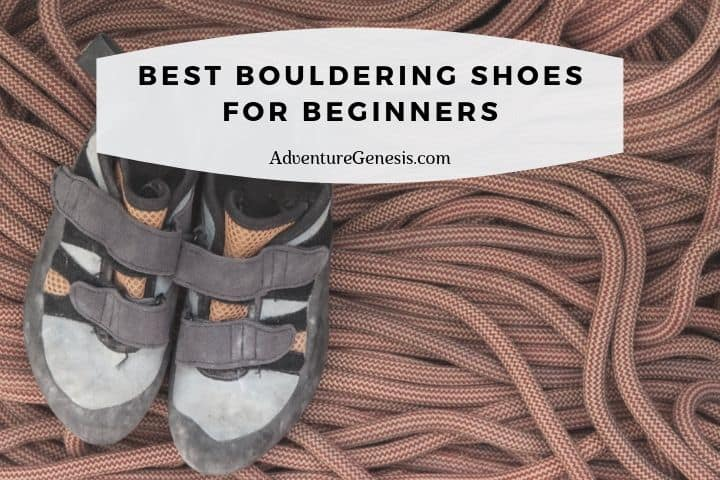Best Indoor Bouldering Shoes for Beginners