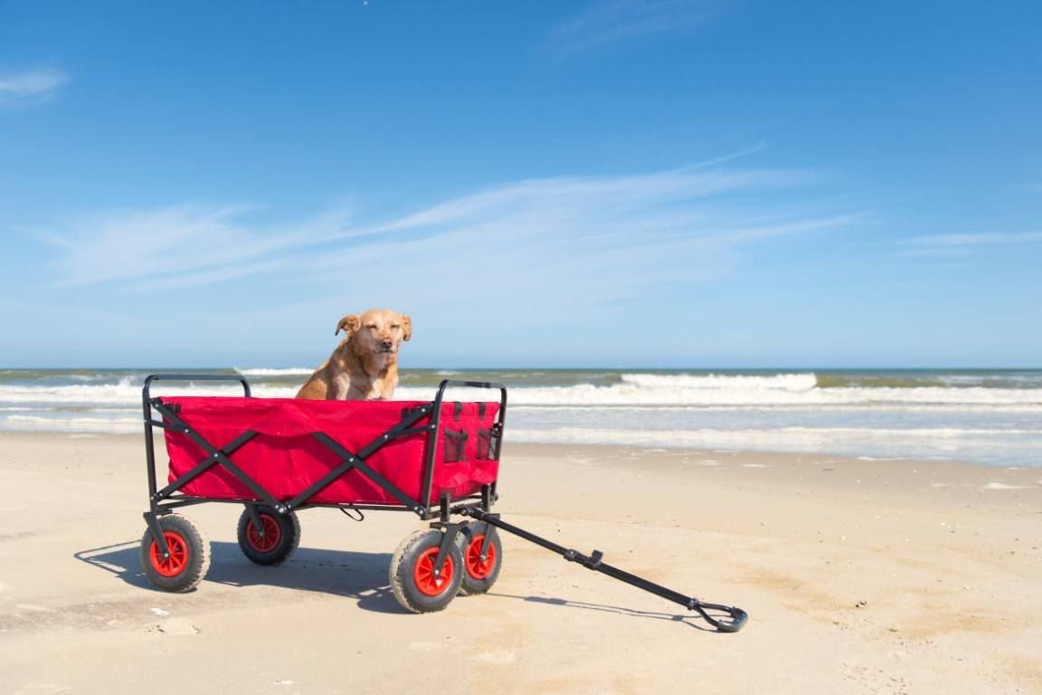 Beach wagon on soft sand