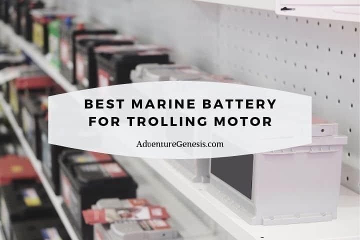 Best Marine Battery for Trolling Motor